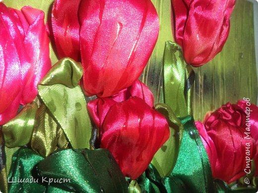 тюльпаны под дождем фото 4