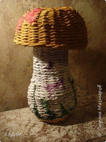 гриб копилка фото 1