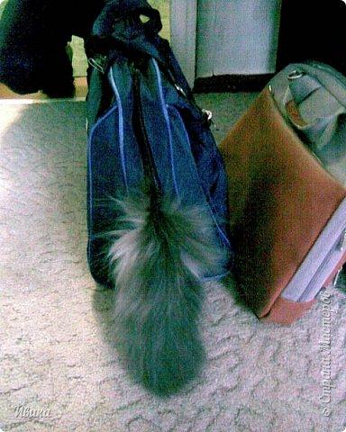 """Как я уже писала вот здесь  http://stranamasterov.ru/node/976335  у нас живут 2 кошки+2 кота и 2 собаки.  Живём мы в частном доме, места для животных больше, чем достаточно.  И наконец-то я собралась с силами и мыслями (и те и другие бывают попеременно)  написать об остальных наших любимцах.  Знакомьтесь - Томас. Он же - Сер Том. Он же - Томашек, он же- Масяня, он же - Маха. В зависимости от ситуации и степени шкодности. Таким мы принесли его домой 7 лет назад. История появления - это отдельная история. После того, как у нас пропал бесследно очередной кот, после наших с дочей слёз по поводу пропажи, муж сказал: """"Никаких котов! Хватит!""""  Оно и понятно, вынянчили, выкормили, обласканный, зацелованный всеми. Знакомо, думаю, многим любителям этих хвостатых. Но... в очередной поход на рынок с дочей и будущим зятем, при входе в рынок, увидели дяденьку, продающего эту серую прелесть! В машине их было штук 6-7. Остановились посмотреть.  Ушли с покупкой, после уговоров дочи и зятя: """"Ну посмотри какие красивые! Ну давай возьмём!""""  Мои аргументы, что папа против, были отброшены одним аргументом: """"Ну он же его ещё не видел! Он же - няшка! Папа его сразу полюбит!"""" Да и как его можно было не полюбить! Взяли. Несём папе. Кто признается в покупке?!  Мама, конечно же! Но показали Томаса папе дети. И... папа влюбился в него с первого взгляда! А эта серая шкодина и сейчас отдаёт ему предпочтение между всеми нами! Имя ему придумывали не очень долго. Как-то само пришло - Том, Томас. фото 14"""