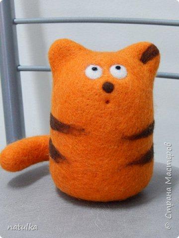 котик полосатик фото 1