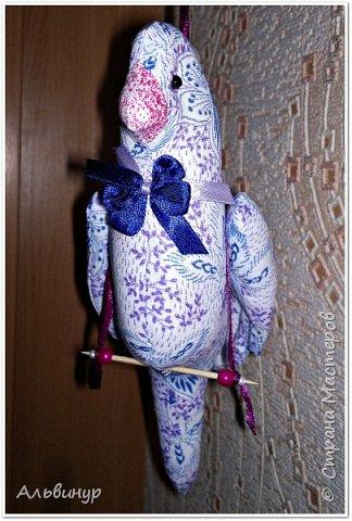 Уже длительное время увлекаюсь игрушками в стиле Тильда. Взяла выкройку вот тут http://tildas.ru/uploads/posts/2011-10/thumbs/1317633151_3.jpg  и решила рискнуть создать птичку. фото 5