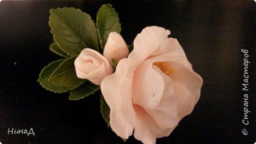 Здравствуй страна! Вот такая брошь у меня получилась. Не знаю шиповник или, может быть, дикая роза, но что-то получилось. Насколько хорошо судить вам.  фото 1