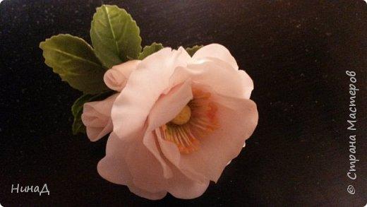 Здравствуй страна! Вот такая брошь у меня получилась. Не знаю шиповник или, может быть, дикая роза, но что-то получилось. Насколько хорошо судить вам.  фото 3