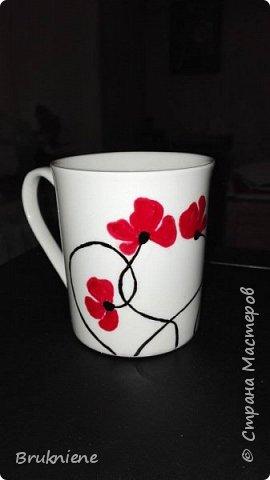 Моя самая первая подарочная чашка. Запекаемый контур Pebeo и маркер той же фирмы. В актином использовании уже три месяца и очень нравится своей хозяйке. фото 6