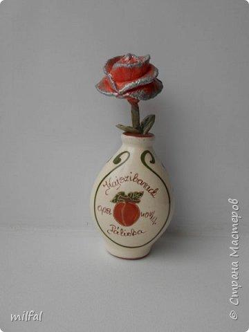 Родился ещё один домик из солёного теста- виноградный. За основу взяла стекл.бутылку из-под льняного масла. фото 6