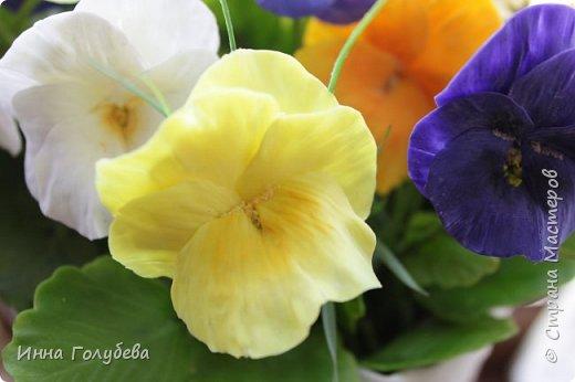 Теплым и солнечным, радостным летом синим и белым, и смешанным цветом, шепчут весёлые, яркие сказки эти цветочки АНЮТИНЫ ГЛАЗКИ.  Бабочек, синих и жёлтых, и белых много на клумбу цветочную село. Сами узнаете их без подсказки это цветочки - АНЮТИНЫ ГЛАЗКИ  О. Огланова Вот такую клумбочку слепила на заказ) фото 3
