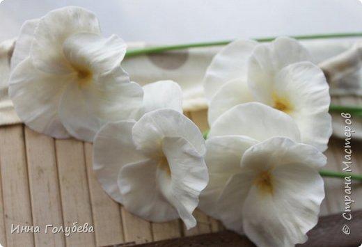 Теплым и солнечным, радостным летом синим и белым, и смешанным цветом, шепчут весёлые, яркие сказки эти цветочки АНЮТИНЫ ГЛАЗКИ.  Бабочек, синих и жёлтых, и белых много на клумбу цветочную село. Сами узнаете их без подсказки это цветочки - АНЮТИНЫ ГЛАЗКИ  О. Огланова Вот такую клумбочку слепила на заказ) фото 6