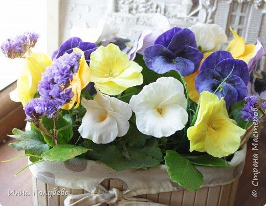 Теплым и солнечным, радостным летом синим и белым, и смешанным цветом, шепчут весёлые, яркие сказки эти цветочки АНЮТИНЫ ГЛАЗКИ.  Бабочек, синих и жёлтых, и белых много на клумбу цветочную село. Сами узнаете их без подсказки это цветочки - АНЮТИНЫ ГЛАЗКИ  О. Огланова Вот такую клумбочку слепила на заказ) фото 18