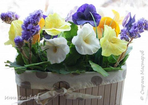Теплым и солнечным, радостным летом синим и белым, и смешанным цветом, шепчут весёлые, яркие сказки эти цветочки АНЮТИНЫ ГЛАЗКИ.  Бабочек, синих и жёлтых, и белых много на клумбу цветочную село. Сами узнаете их без подсказки это цветочки - АНЮТИНЫ ГЛАЗКИ  О. Огланова Вот такую клумбочку слепила на заказ) фото 2