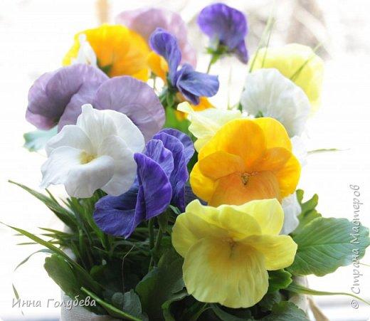 Теплым и солнечным, радостным летом синим и белым, и смешанным цветом, шепчут весёлые, яркие сказки эти цветочки АНЮТИНЫ ГЛАЗКИ.  Бабочек, синих и жёлтых, и белых много на клумбу цветочную село. Сами узнаете их без подсказки это цветочки - АНЮТИНЫ ГЛАЗКИ  О. Огланова Вот такую клумбочку слепила на заказ) фото 1