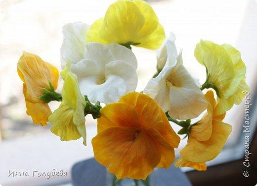 Теплым и солнечным, радостным летом синим и белым, и смешанным цветом, шепчут весёлые, яркие сказки эти цветочки АНЮТИНЫ ГЛАЗКИ.  Бабочек, синих и жёлтых, и белых много на клумбу цветочную село. Сами узнаете их без подсказки это цветочки - АНЮТИНЫ ГЛАЗКИ  О. Огланова Вот такую клумбочку слепила на заказ) фото 12
