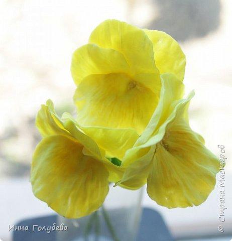 Теплым и солнечным, радостным летом синим и белым, и смешанным цветом, шепчут весёлые, яркие сказки эти цветочки АНЮТИНЫ ГЛАЗКИ.  Бабочек, синих и жёлтых, и белых много на клумбу цветочную село. Сами узнаете их без подсказки это цветочки - АНЮТИНЫ ГЛАЗКИ  О. Огланова Вот такую клумбочку слепила на заказ) фото 11