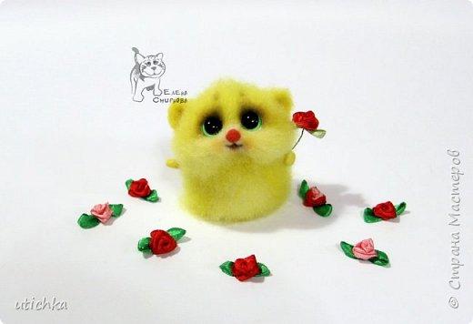Зверек МыХоКа - это мышка, хомячок и кошка в одном флаконе.))) фото 6