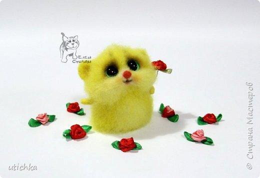 Зверек МыХоКа - это мышка, хомячок и кошка в одном флаконе.))) фото 8