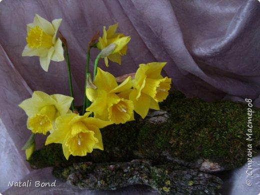 Ну и немного еще весны....Давно не лепила их...Приятного просмотра. фото 4