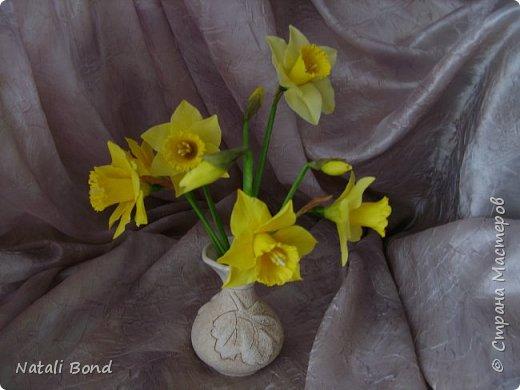 Ну и немного еще весны....Давно не лепила их...Приятного просмотра. фото 5