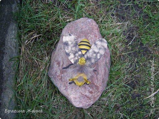 Всем жителям замечательной страны огромный привет!!!!!сегодня я к вам еще с одной пчелкой))))вот такая красавица получилась у меня!приглашаю к просмотру! фото 3