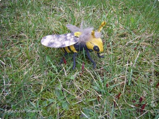 Всем жителям замечательной страны огромный привет!!!!!сегодня я к вам еще с одной пчелкой))))вот такая красавица получилась у меня!приглашаю к просмотру! фото 5