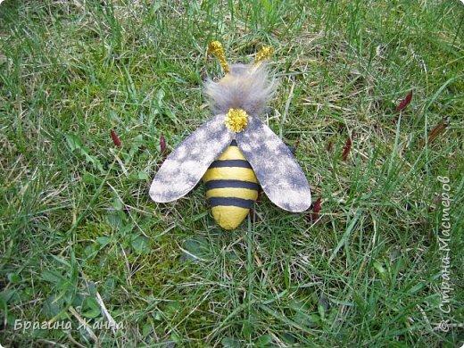 Всем жителям замечательной страны огромный привет!!!!!сегодня я к вам еще с одной пчелкой))))вот такая красавица получилась у меня!приглашаю к просмотру! фото 6