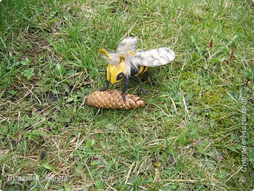 Всем жителям замечательной страны огромный привет!!!!!сегодня я к вам еще с одной пчелкой))))вот такая красавица получилась у меня!приглашаю к просмотру! фото 7