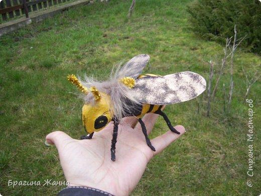 Всем жителям замечательной страны огромный привет!!!!!сегодня я к вам еще с одной пчелкой))))вот такая красавица получилась у меня!приглашаю к просмотру! фото 8