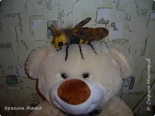 Всем жителям замечательной страны огромный привет!!!!!сегодня я к вам еще с одной пчелкой))))вот такая красавица получилась у меня!приглашаю к просмотру! фото 9