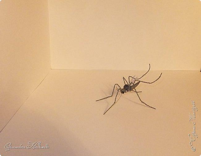"""Здравствуйте дорогие мои мастера и мастерицы! Сегодня я к вам вот с такой маленькой поделкой, размер тельца комарика около четырёх сантиметров и ещё лапки. Подобный комарик у меня уже был, но тот был повторюшка, а теперь я решила сделать своего, перерыла весь интернет, нашла картинку и по ней сделала немного по другому. Итак встречайте...  Я комарик необычный. Я комарик заграничный. Над Москвой кружусь, пищу- """"Шереметьево"""" ищу. Приближаются осадки. СРОЧНО ТРЕБУЮ ПОСАДКИ!   А.Гришин фото 2"""