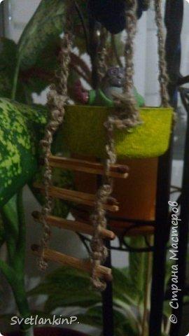 Очень хорошее применение старой,прогоревшей лампочки в качестве декора. В данном случае у меня висит среди цветов. Каркас корзины из проволоки из под шампанского, обмотанного сплетенной косичкой из веревки-шпагат. фото 4