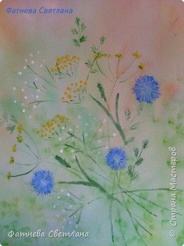 Полевые цветы и травки фото 2
