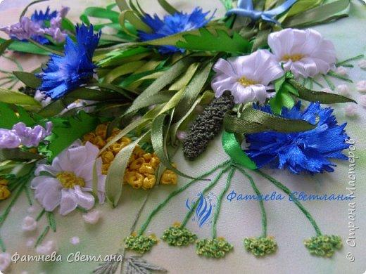 Полевые цветы и травки фото 5