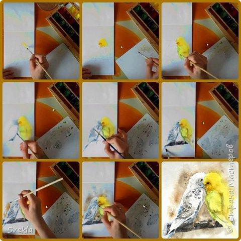 Как нарисовать миниатюру с влюбленными попугайчиками.