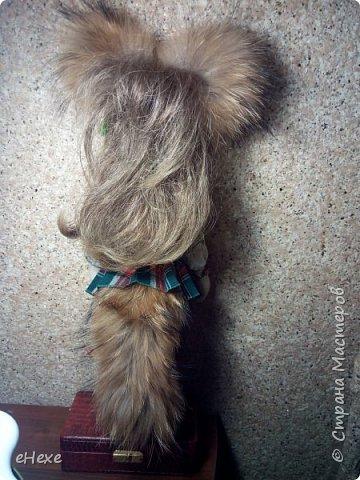 Кицунэ - девочка-лисичка. Она еще совсем маленькая, ей даже не исполнилось 100 лет, поэтому у нее пока только один хвост, который она не научилась прятать, превращаясь в девочку. Но она очень одарённая и обязательно отрастит все 9 хвостов :) фото 3