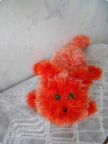Доброе время, Страна!!!!!   Сегодня я с очень давней хотелкой.... котом. Почему-то захотелось рыжего....солнечного....Знакомьтесь-- кот Лентяй фото 1