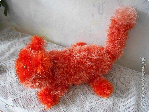 Доброе время, Страна!!!!!   Сегодня я с очень давней хотелкой.... котом. Почему-то захотелось рыжего....солнечного....Знакомьтесь-- кот Лентяй фото 2