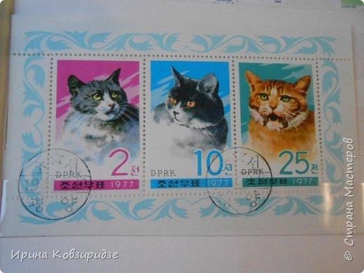 С 90-х годов лежит у нас дома коллекция марок. Начинаю показ с животных: коты, собаки, кони. Эти коты из Экваториальной Гвинеи - так написано. фото 2