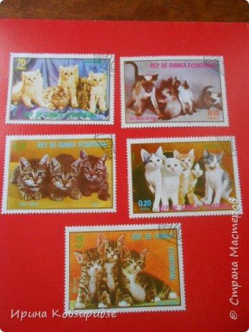 С 90-х годов лежит у нас дома коллекция марок. Начинаю показ с животных: коты, собаки, кони. Эти коты из Экваториальной Гвинеи - так написано. фото 1