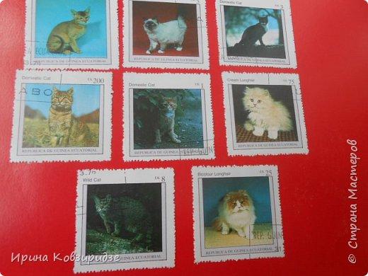 С 90-х годов лежит у нас дома коллекция марок. Начинаю показ с животных: коты, собаки, кони. Эти коты из Экваториальной Гвинеи - так написано. фото 5