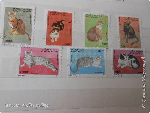 С 90-х годов лежит у нас дома коллекция марок. Начинаю показ с животных: коты, собаки, кони. Эти коты из Экваториальной Гвинеи - так написано. фото 4
