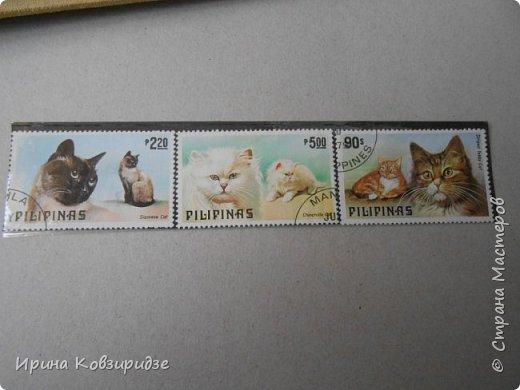 С 90-х годов лежит у нас дома коллекция марок. Начинаю показ с животных: коты, собаки, кони. Эти коты из Экваториальной Гвинеи - так написано. фото 6