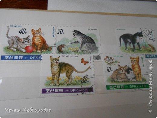 С 90-х годов лежит у нас дома коллекция марок. Начинаю показ с животных: коты, собаки, кони. Эти коты из Экваториальной Гвинеи - так написано. фото 3