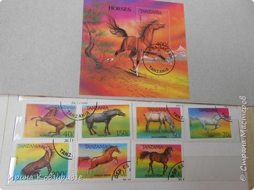 С 90-х годов лежит у нас дома коллекция марок. Начинаю показ с животных: коты, собаки, кони. Эти коты из Экваториальной Гвинеи - так написано. фото 18