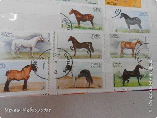 С 90-х годов лежит у нас дома коллекция марок. Начинаю показ с животных: коты, собаки, кони. Эти коты из Экваториальной Гвинеи - так написано. фото 19