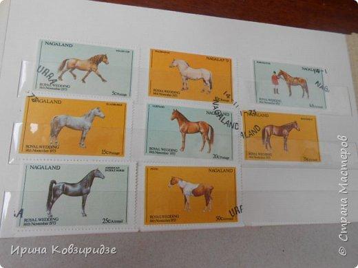 С 90-х годов лежит у нас дома коллекция марок. Начинаю показ с животных: коты, собаки, кони. Эти коты из Экваториальной Гвинеи - так написано. фото 20