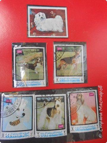 С 90-х годов лежит у нас дома коллекция марок. Начинаю показ с животных: коты, собаки, кони. Эти коты из Экваториальной Гвинеи - так написано. фото 10