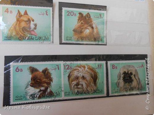С 90-х годов лежит у нас дома коллекция марок. Начинаю показ с животных: коты, собаки, кони. Эти коты из Экваториальной Гвинеи - так написано. фото 14