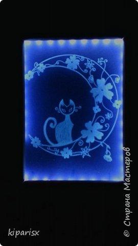 Лунный кошарик ))  Картина с подсветкой, можно использовать как ночник. По краю рамки внутри проклеена светодиодная лента, к ней припаен зарядник от старого мобильника. Задняя часть сделана из панели мдф. В качестве фона использовался цветной картон тёмных тонов. фото 1