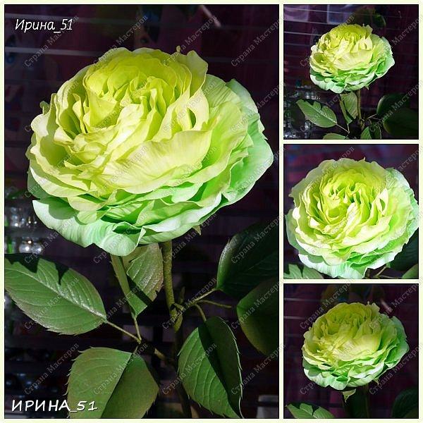 Добрый день дорогие соседи замечательной Страны Мастеров! Сегодня я к Вам с очередной порцией фоамирановых цветов.  Приглашаю к просмотру.  Новая роза. Собственная разработка, сложная серединка, многослойное окрашивание.  фото 2