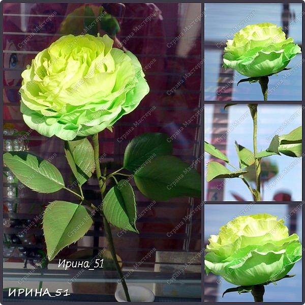 Добрый день дорогие соседи замечательной Страны Мастеров! Сегодня я к Вам с очередной порцией фоамирановых цветов.  Приглашаю к просмотру.  Новая роза. Собственная разработка, сложная серединка, многослойное окрашивание.  фото 1