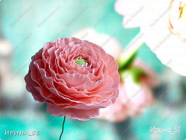 Добрый день дорогие соседи замечательной Страны Мастеров! Сегодня я к Вам с очередной порцией фоамирановых цветов.  Приглашаю к просмотру.  Новая роза. Собственная разработка, сложная серединка, многослойное окрашивание.  фото 5