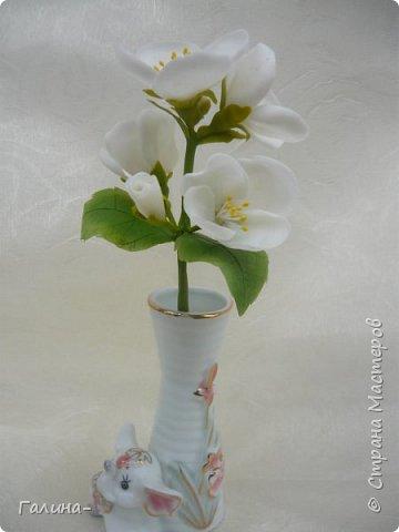 """здравствуйте ! хочу поделиться веточкой жасмина , тюльпаном и брошью с ирисом , я их лепила на мк """"шедевры из глины и фарфора"""" фото 1"""